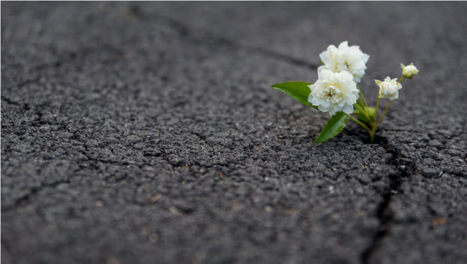 A RALLYING CALL FOR RESILIENCE IN BUSINESS OWNERS